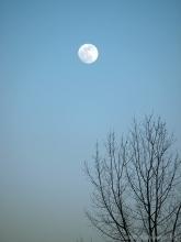 2010_01_29_moon_01