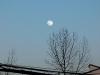 2010_01_29_moon_03
