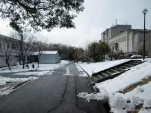 2011_01_17_01