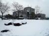 2011_01_17_04