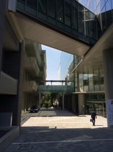 中京大学-1